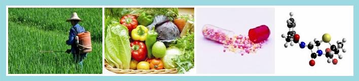 农药残留,抗生素和防腐剂降解