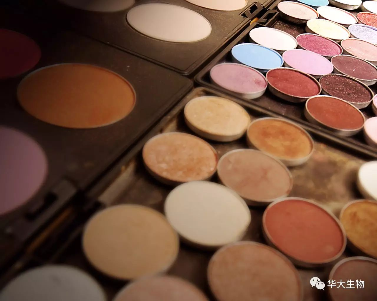 惠州化妆品必赢bwin下载国内
